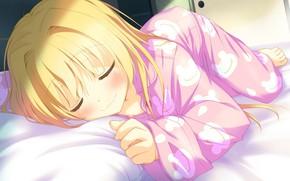 Picture blush, pajamas, on the bed, visual novel, sleeping girl, sweet dream, irotoridori from sekai, by …