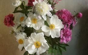 Picture macro, bouquet, peonies