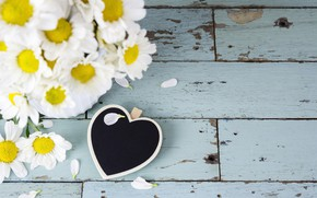 Picture flowers, heart, chamomile, love, heart, wood, flowers, camomile