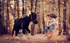 Picture autumn, forest, trees, nature, smile, animal, boy, baby, bucket, pony, child, Dudka, bokeh, Anna Ipatiev