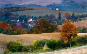 Picture autumn, trees, nature, field, home