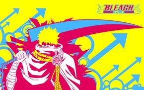 Picture sword, Bleach, Bleach, Ichigo Kurosaki, zanpakutō
