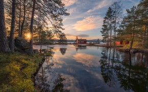 Picture trees, lake, reflection, spring, Norway, house, Norway, RINGERIKE, Ringerike