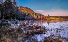 Picture landscape, nature, beauty, space, late autumn
