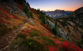 Picture autumn, forest, mountains, ate, slope, path