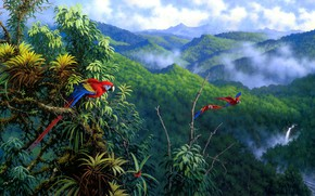 Picture leaves, clouds, mountains, birds, branches, nature, fog, hills, figure, waterfall, picture, art, parrot, parrots, painting, …