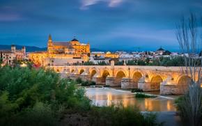 Picture trees, bridge, river, Spain, Spain, Andalusia, Andalusia, Cordoba, Cordoba mosque, Mesquite, Cordoba, Roman bridge, Roman …