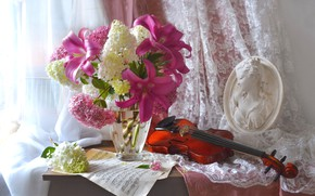 Picture girl, notes, violin, Lily, bouquet, window, vase, bust, hydrangea