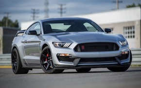 Picture asphalt, grey, Mustang, Ford, Shelby, GT350R, 2020