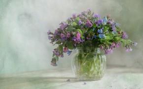 Picture flowers, table, treatment, bouquet, blue, vase, pink, still life, Scilla, lungwort