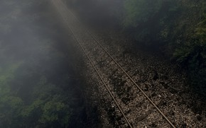 Picture forest, night, fog, railroad