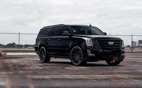Picture Cadillac, Escalade, Black, America, LED lights, ESV