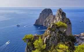 Picture sky, trees, sea, landscape, Italy, nature, rocks, boats, horizon, Capri, cliff, limestone, far view, Stacks