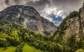 Picture forest, clouds, trees, mountains, rocks, Switzerland, Alps, gorge