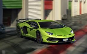Picture Lamborghini, Aventador, SVJ, 2019, Lamborghini Aventador SVJ