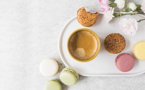 Picture flowers, coffee, Cup, dessert, flowers, cakes, cup, sweet, sweet, coffee, dessert, macaroon, french, macaron, macaroon