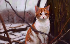 Picture cat, snow, nature, by Meorow