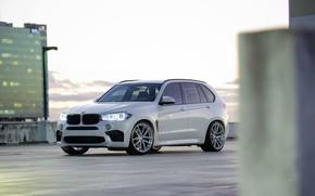 Picture BMW, City, Light, White, X5M, Sight, F15, LED