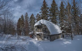Picture forest, light, snow, trees, branches, house, the snow, wooden, mansion, path, snow