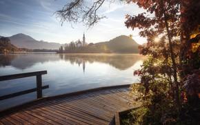 Picture autumn, landscape, mountains, nature, lake, hills, morning, island, Slovenia, mostok, Bled