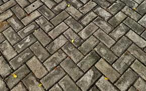 Picture grey, brick, platform