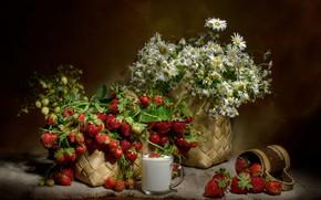 Picture basket, chamomile, milk, strawberry