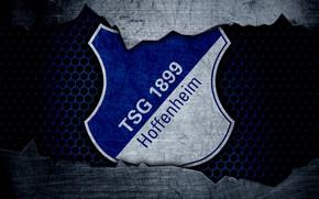Picture wallpaper, sport, logo, football, Hoffenheim