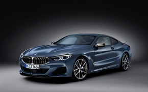 Picture grey, background, coupe, BMW, Coupe, 2018, gray-blue, 8-Series, pale blue, M850i xDrive, Eight, G15