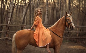 Picture horse, horse, girl, sitting, long-haired, Rus