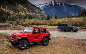 Picture water, red, shore, 2018, Jeep, dark gray, Wrangler Rubicon, Wrangler Sahara