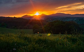 Picture field, forest, summer, grass, sunset, mountains, hills, meadow