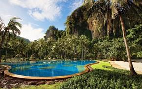 Picture palm trees, rocks, pool, Thailand, Thailand, resort, Krabi