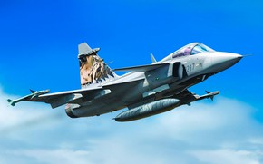 Picture the fourth generation, Can JAS 39 Gripen, Swedish multi-role fighter