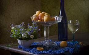 Picture bottle, fruit, still life, apricots