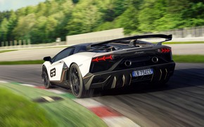Picture speed, Lamborghini, supercar, rear view, racing track, 2018, Aventador, Aventador SVJ, The CONDOMINIUM 63