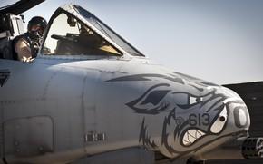 Picture cabin, pilot, attack, USAF, Republic, A-10 Thunderbolt II, anti-tank, warthog, warthog