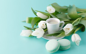 Picture cookies, Cup, tulips, white