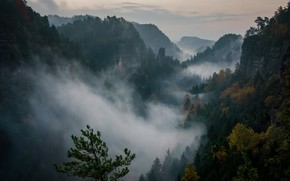 Picture forest, the sky, clouds, trees, sunset, mountains, nature, rocks, the evening, Switzerland, haze