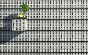 Picture the building, Windows, windows, building, Esther Margraff