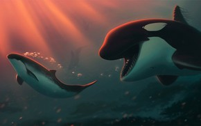 Picture sea, under water, orcas, by Ciorano