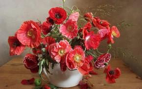 Picture Maki, Apple, bouquet, cherry