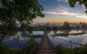 Picture trees, landscape, bridge, nature, fog, river, dawn, morning, Bank, Gums, Alexey Platonov