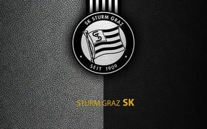 Picture wallpaper, sport, logo, football, Sturm Graz