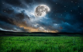 Picture the sky, grass, stars, nature, the moon