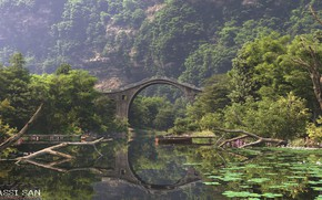 Picture bridge, vegetation, pond, the bridge, environment set