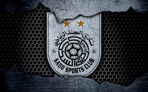 Picture wallpaper, sport, logo, football, Al-Sadd