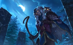 Picture night, the moon, Owl, Freljord, Shaman, Legends of Runeterra