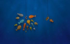 Picture fish, the crowd, art, education, pop, bait, деградация общества