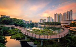 Wallpaper the city, Singapore, Singapore, bridge, Singapore city, lake