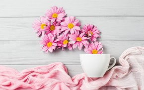 Picture flowers, background, Cup, fabric, chrysanthemum
